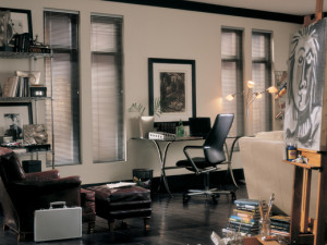 Lightlines® blinds