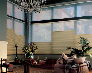 Duette® Honeycomb Shades with Top Down Feature