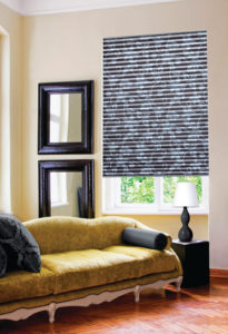 Huinter Douglas Pleated Shades