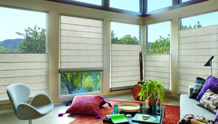Design Studio™ Roman Shades in the family room