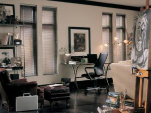 Lightlines® blinds