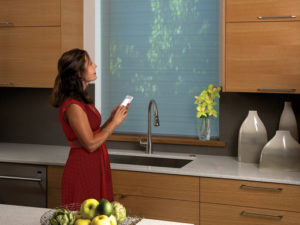 Designer Roller Shades with PowerView Motorization